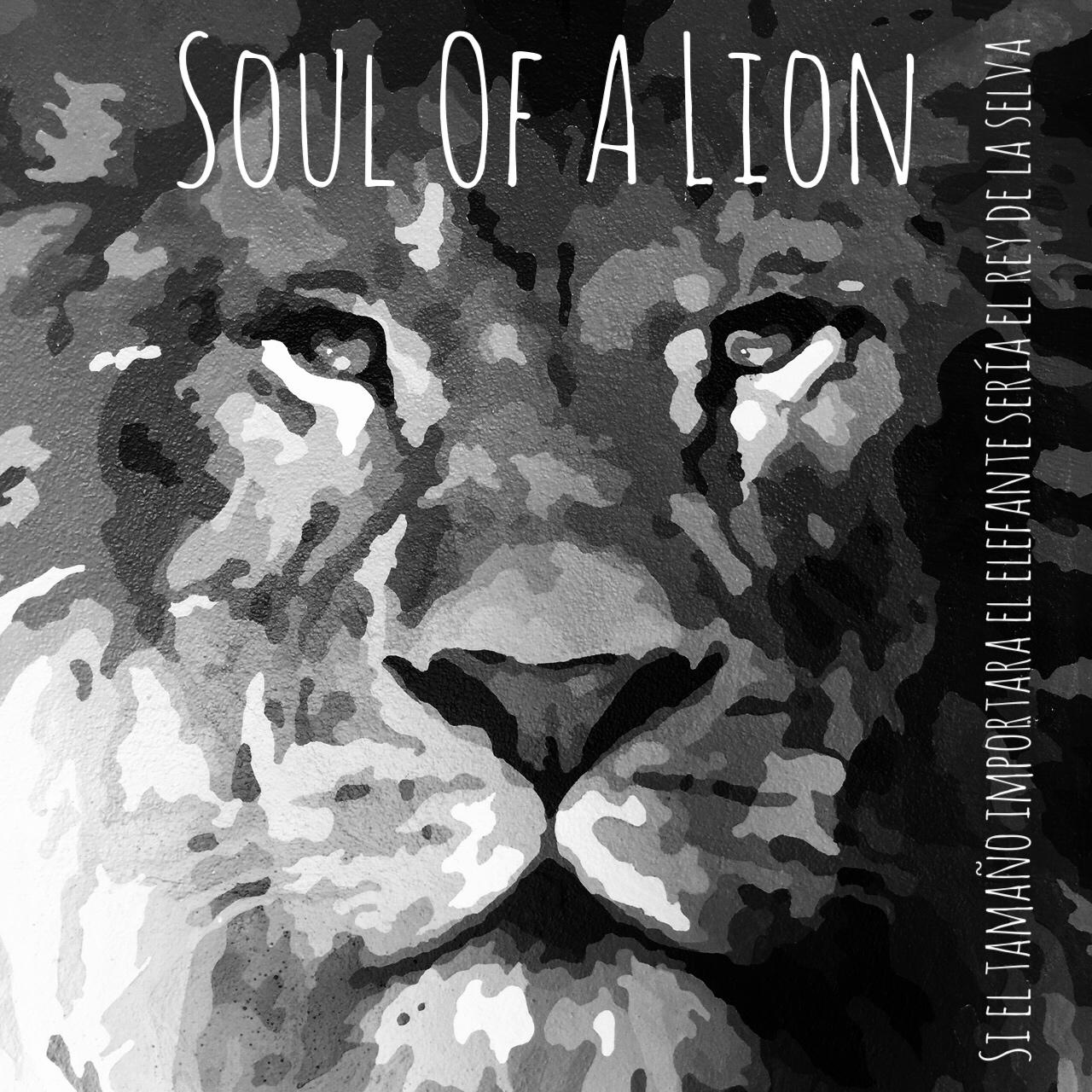 Wod CFS Box CrossFit Sevilla Soul of Lion