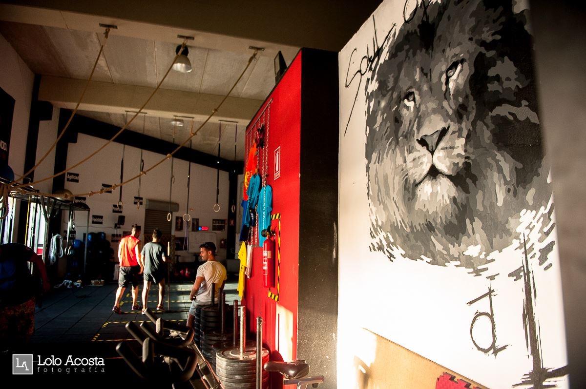 Wod CFS Box CrossFit Sevilla Leones training Lion